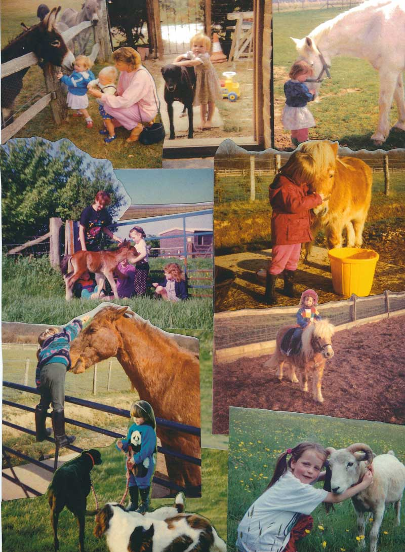 Collage 1 Joss growing up with animals